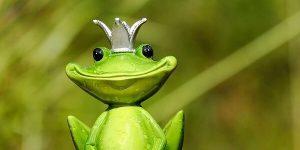 好きな人が気持ち悪くなる蛙化現象とは?