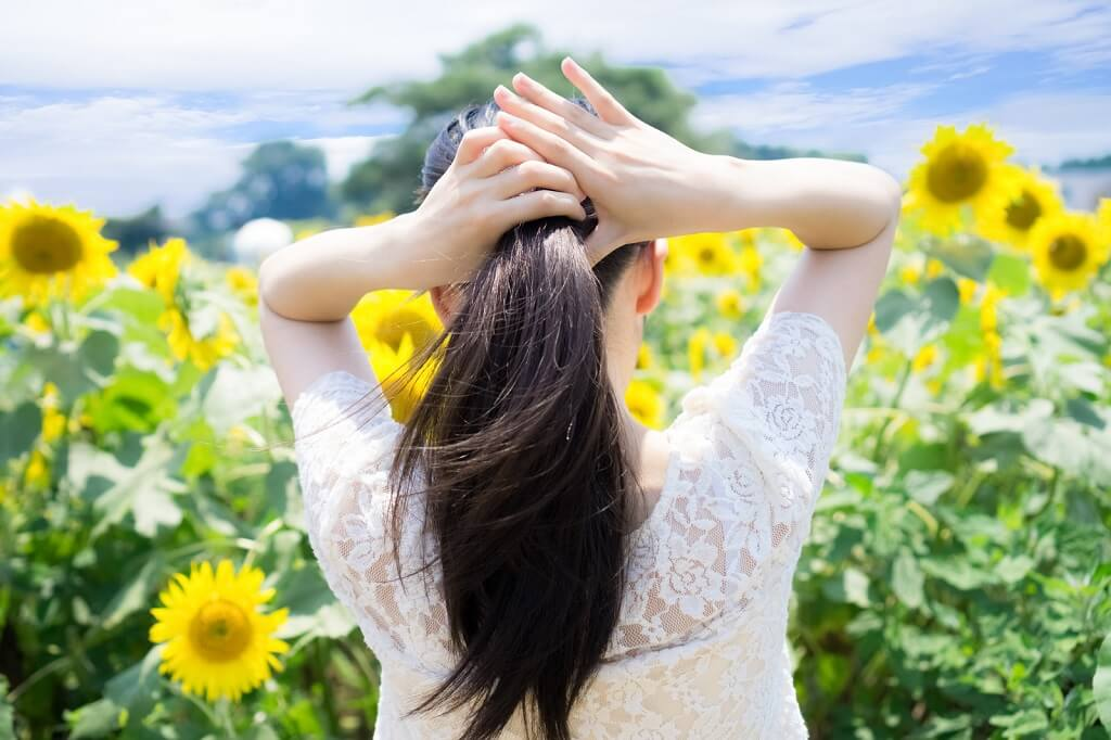ひまわり畑で髪を結う女性