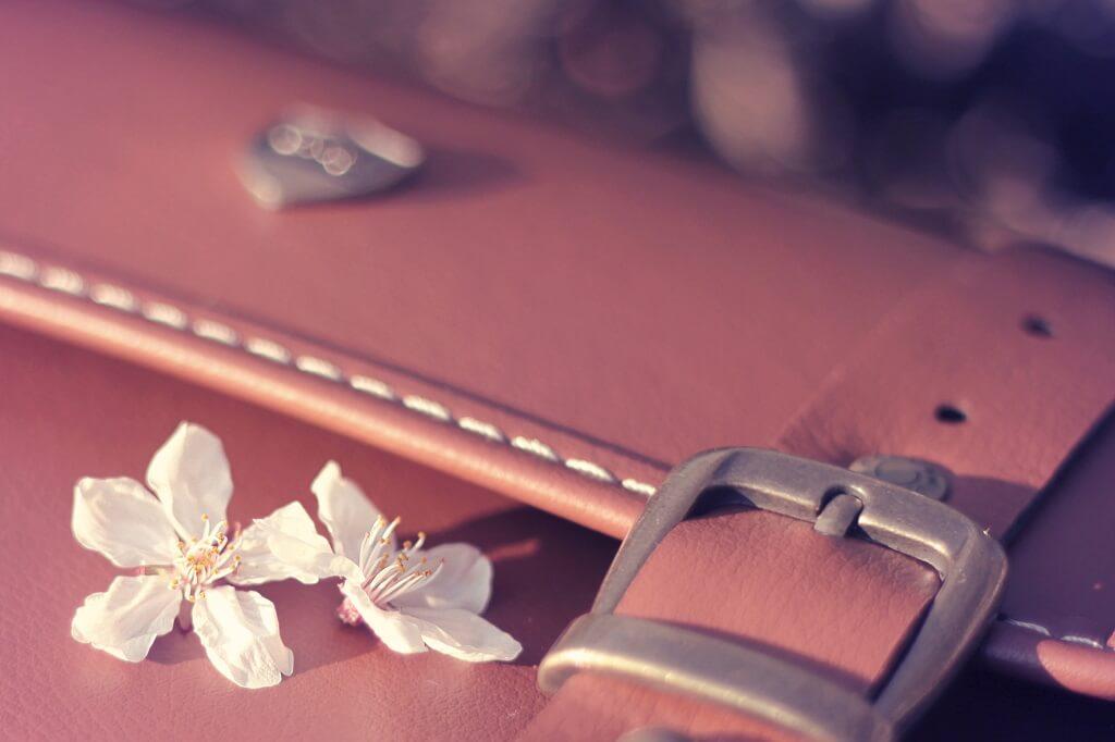 鞄と花びら