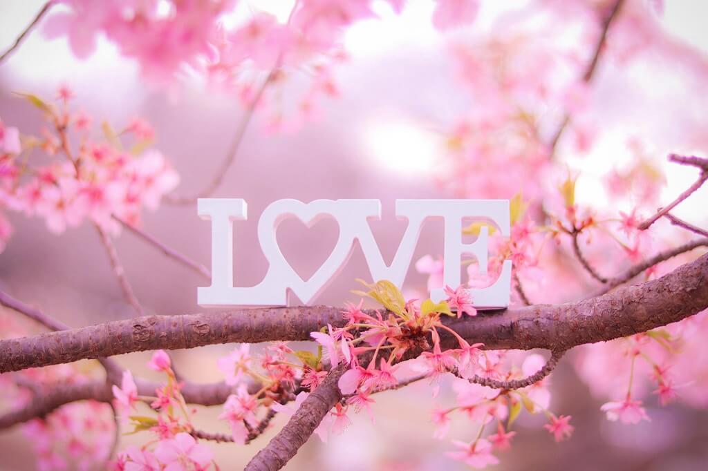 LOVEと桜